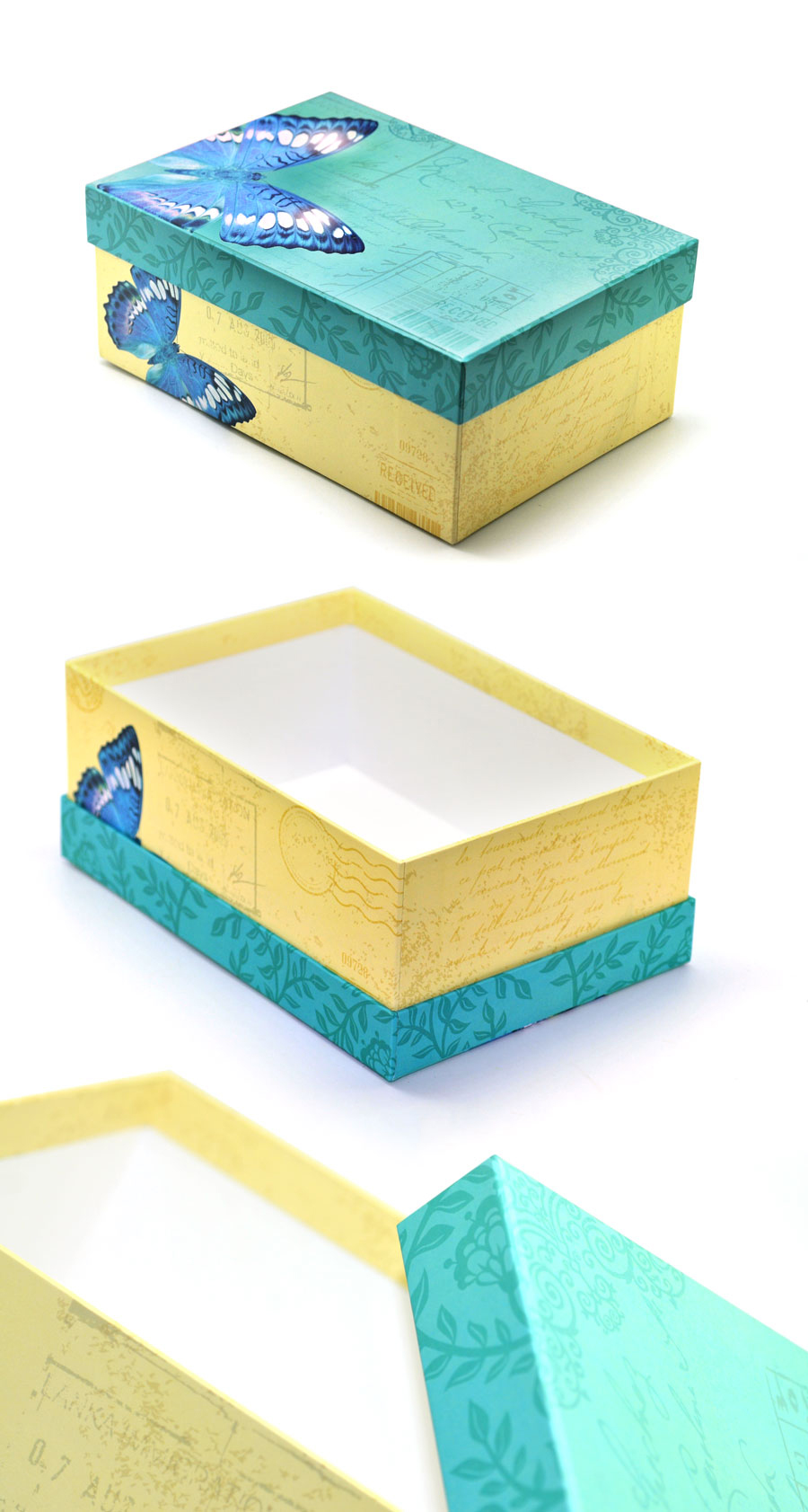 Butterfly-Rigid-box